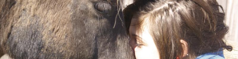 terapi med heste til unge_3
